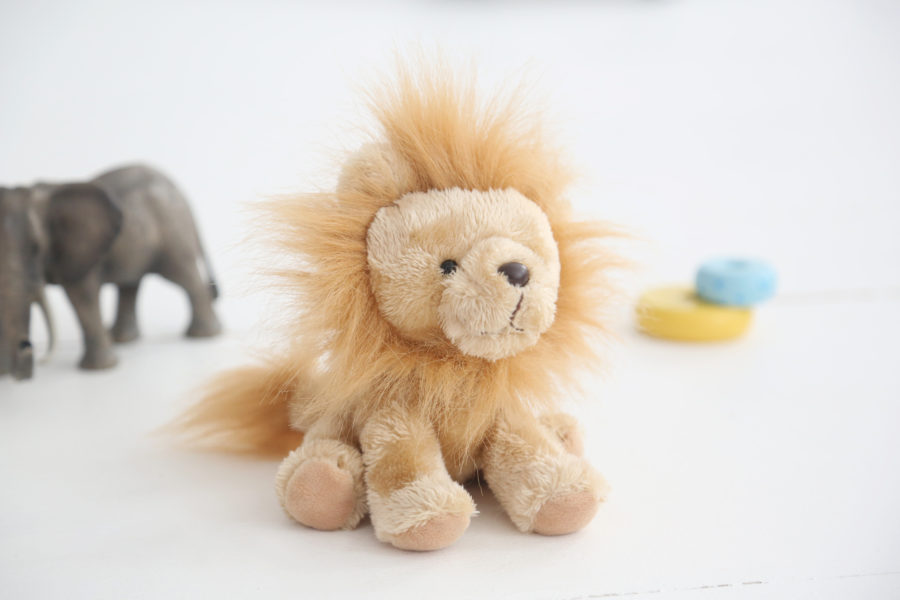 lion-teddy1