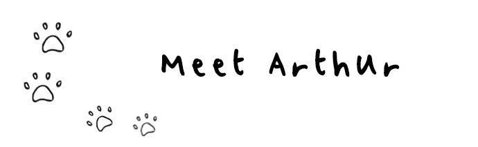 meet-arthur