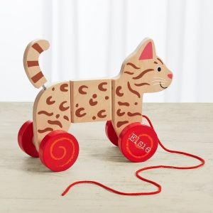 Personalised Pull Along Cat