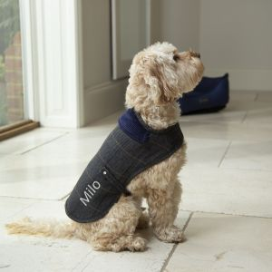 Personalised Tweed Dog Coat - Model