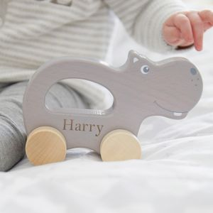 Personalised Grey Hippo Push Along