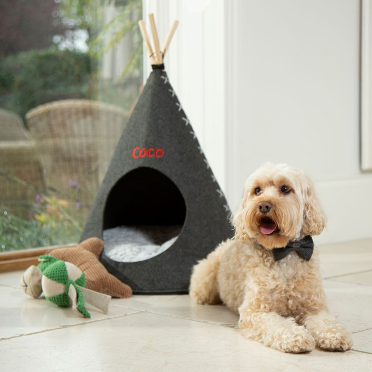 Personalised Grey Pet Teepee - Model