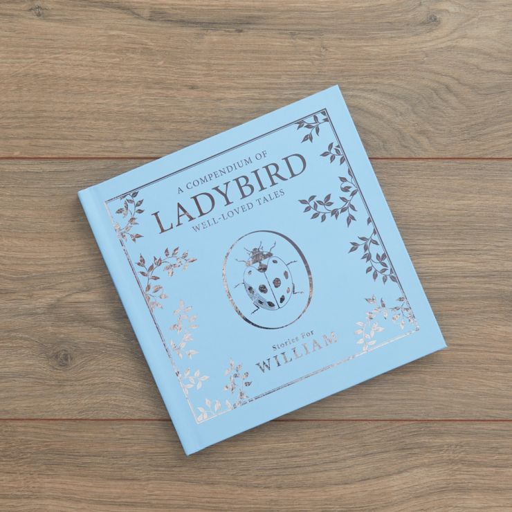 Personalised Blue Ladybird Story Book